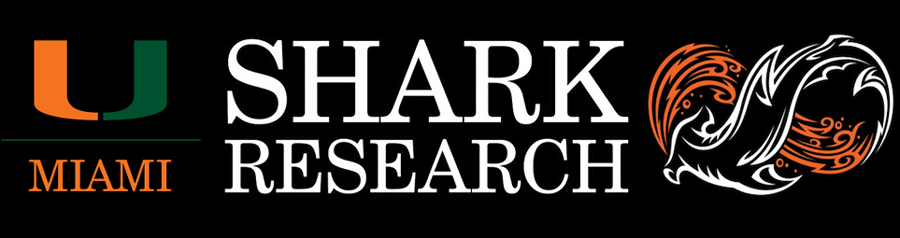 Shark Research & Conservation Program (SRC) | University of Miami